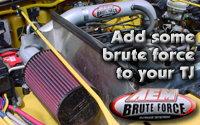 AEM BruteForce TJ Intake System